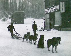 4 dogs and a sled in the snow